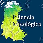 palencia-micologica