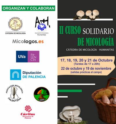 Curso Solidario Micología