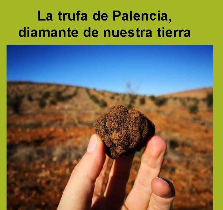 XXIX Jornadas Micológicas Agroforestales